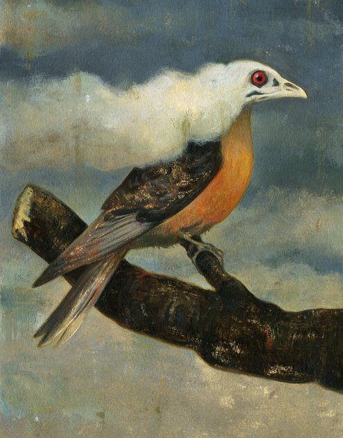 New York Times: The Extinction of the Passenger Pigeon