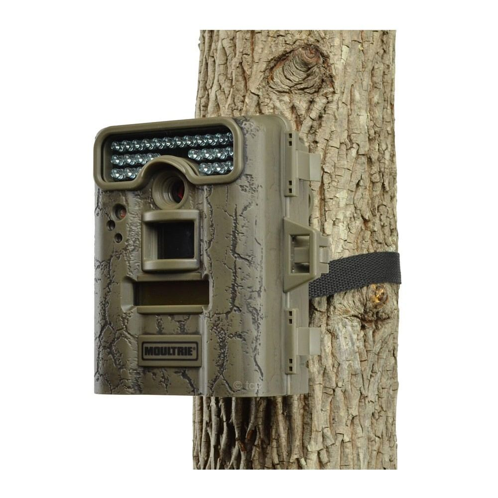 Best Trail Camera Guide Reviews Moultrie